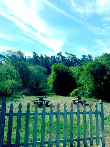 Cambria Park located in Cambria Californai